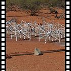 Lo Square Kilometre Array visto da vicino